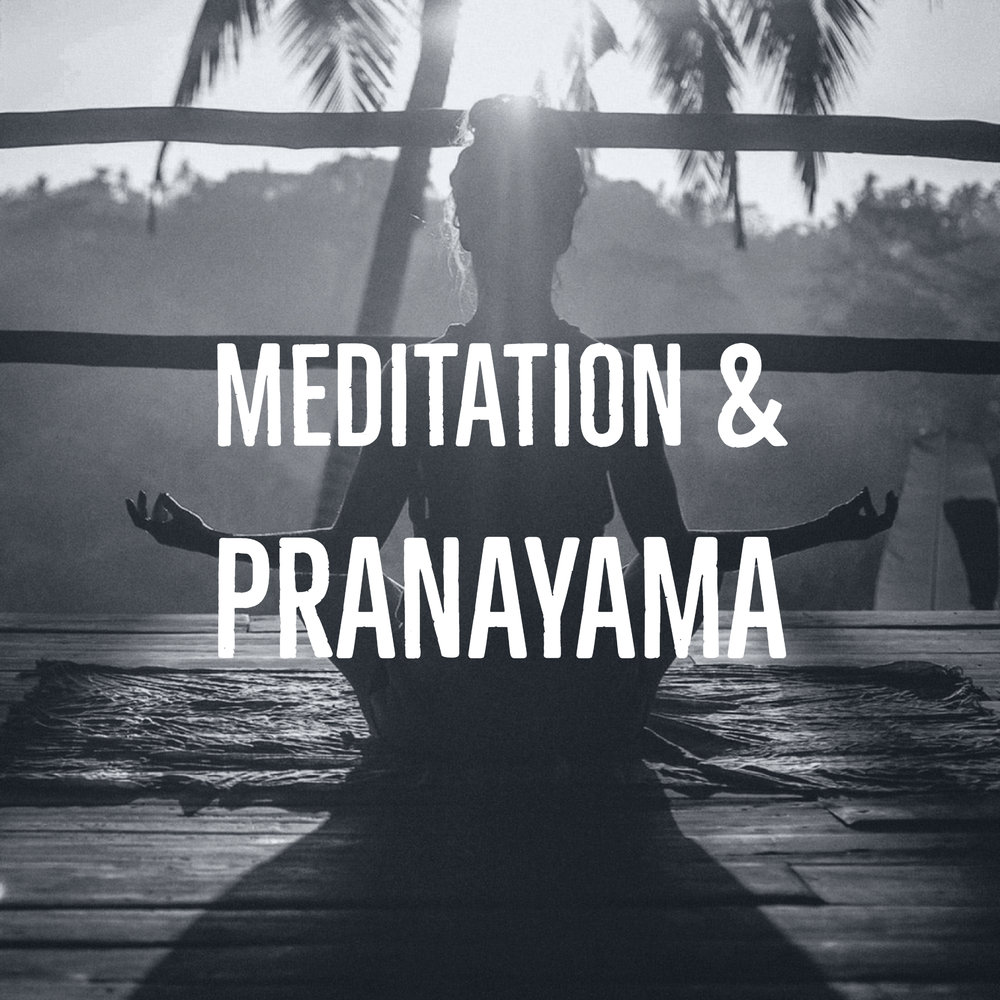 This 45 minute class begins with a discussion of our breath and a weekly practice of directing our breath to support our well-being. Transitioning to meditation, we will discuss and practice various postures, styles, and techniques of meditation. This class is open to all who are looking to calm the mind and deepen their experience with the mind/body connection and manifest peace.