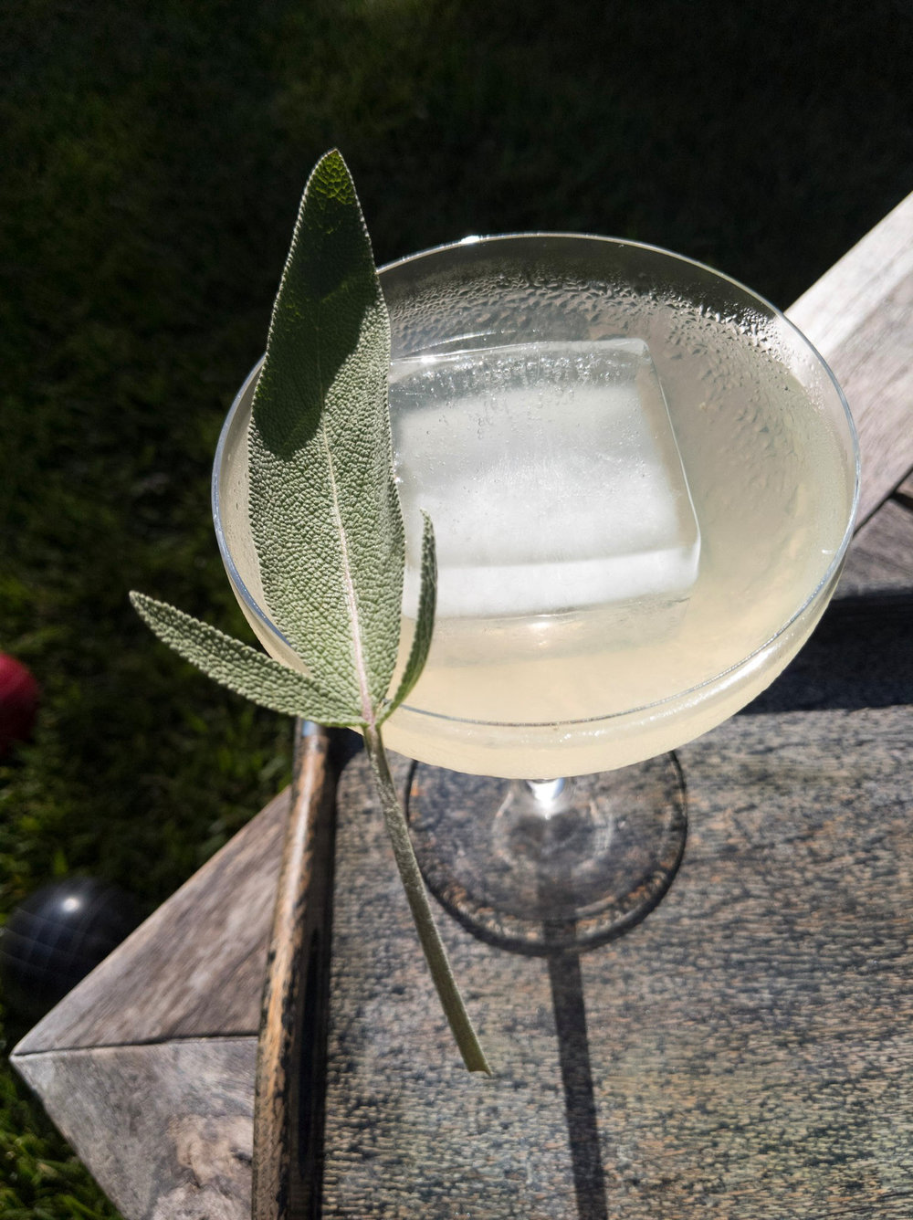 TRAILHEAD - 2 oz Dr. Zzyzx Sage Vodka1 oz fresh squeezed lemon1 oz simple syrupShake with ice & strain