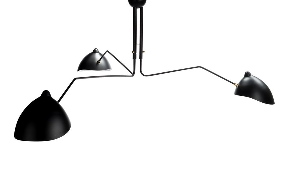 Contemporary flytrap celing pendant (can be ordered).jpg