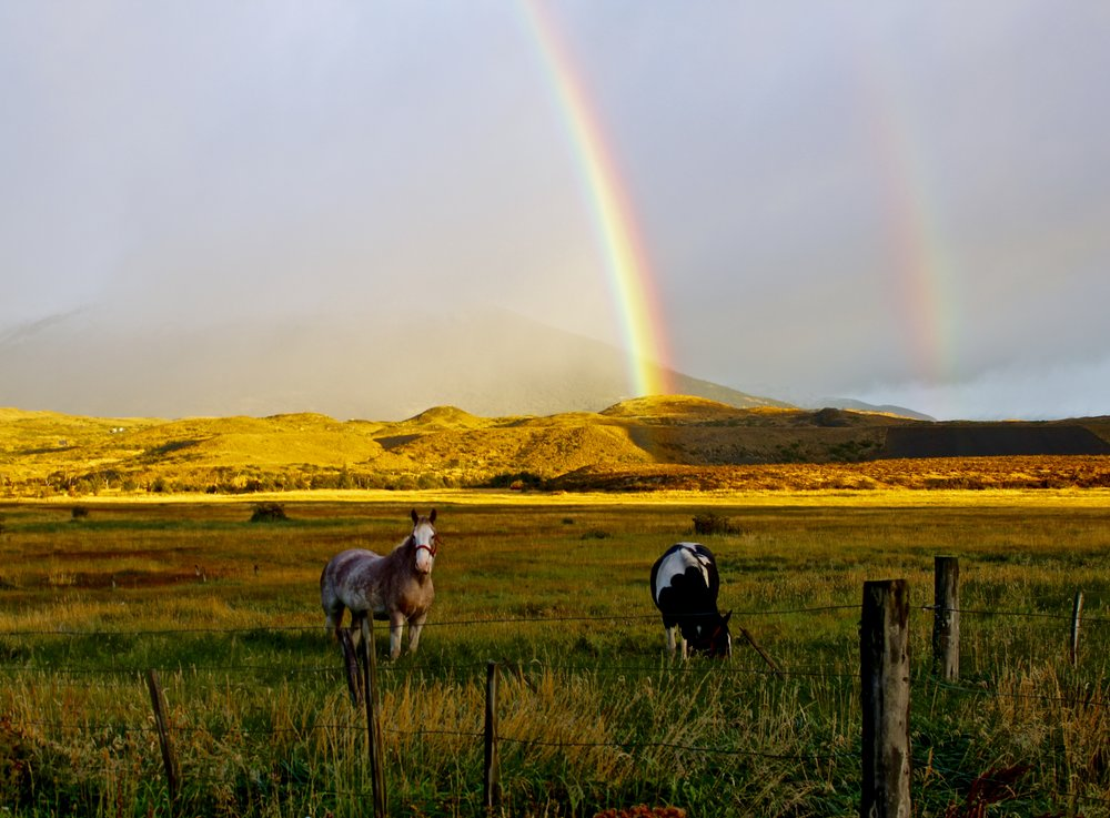 Nearing Torres del Paine, with typical Patagonian scenery - horses, rainbows, and clouds.