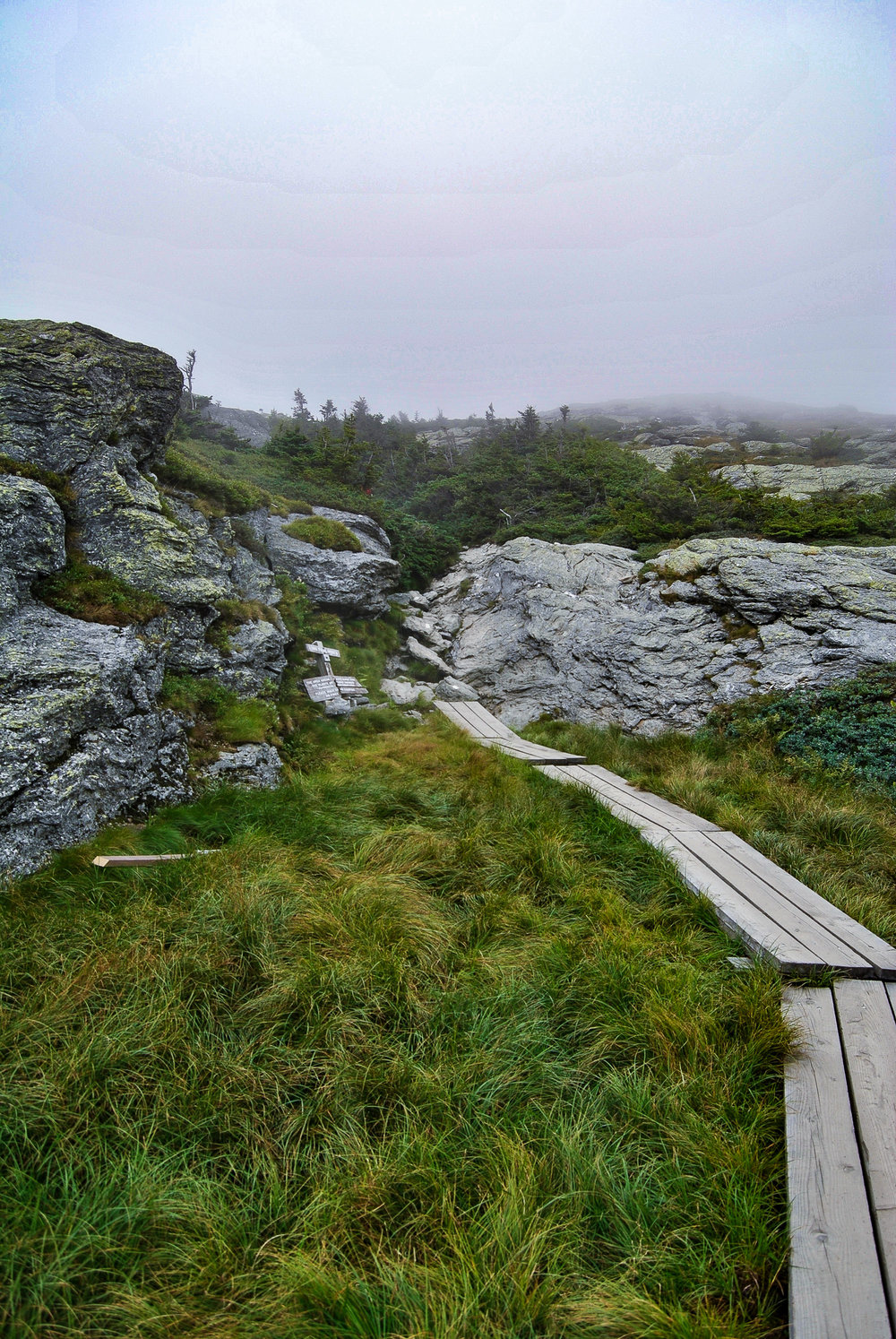 Staying on the trail (wooden planks) is important in zones of Alpine Tundra.