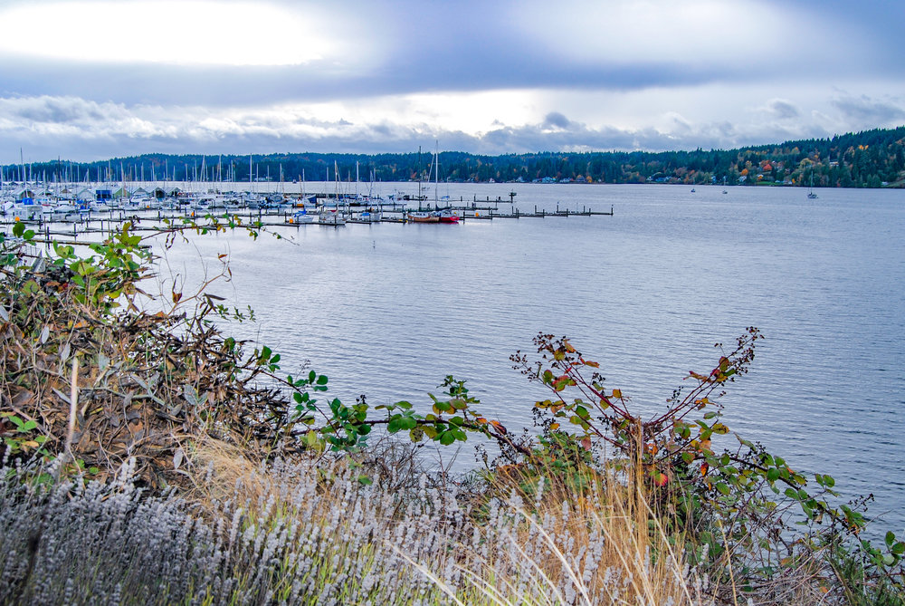 Poulsbo is a must-see, easy day trip in Washington. View from Poulsbohemian Coffeehouse.