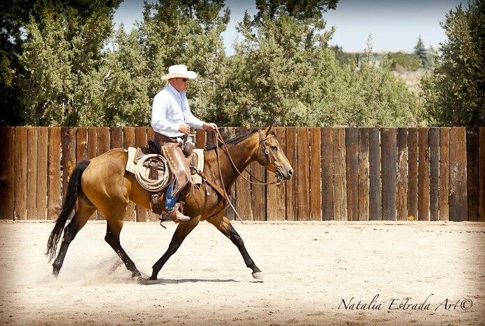 Vaquero Ranch Riding Clinic, Loal on Teo; 2012