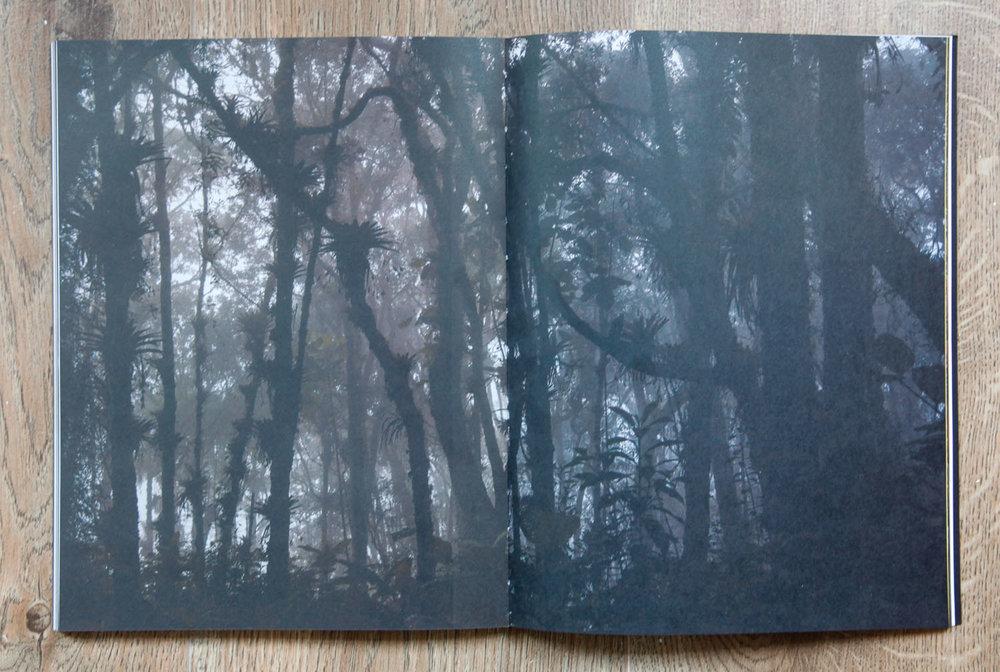 Fotolibro colombiano - El resto es selva- Sebastian Villegas-1.jpg