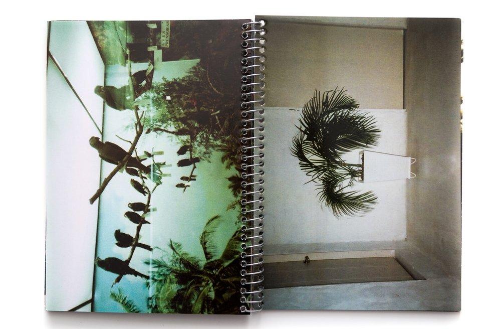 Fotolibros colombianos - Jardines - ValeriaGiraldoRestrepo-12.jpg
