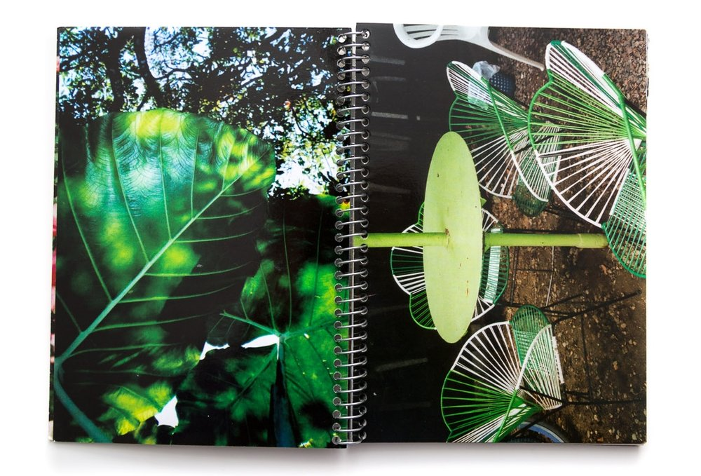 Fotolibros colombianos - Jardines - ValeriaGiraldoRestrepo-3.jpg