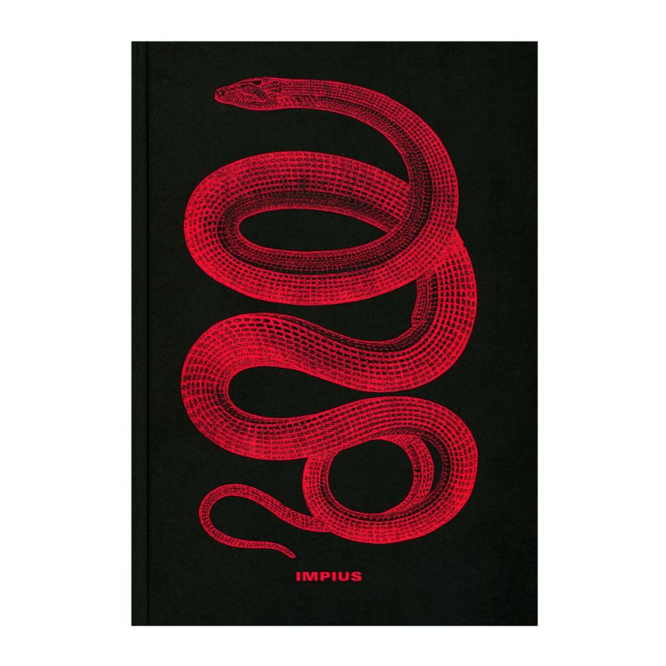 Fotolibro chileno - IMPIUS - Mauricio Toro-Goya