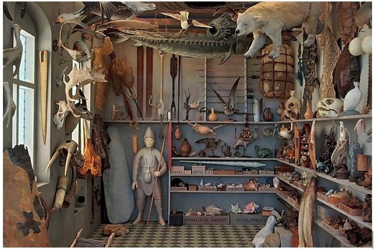 Recreación del Gabinete del Museo de Curiosidades del anticuario danés Ole Worm por la artista Rosamond Purcell.