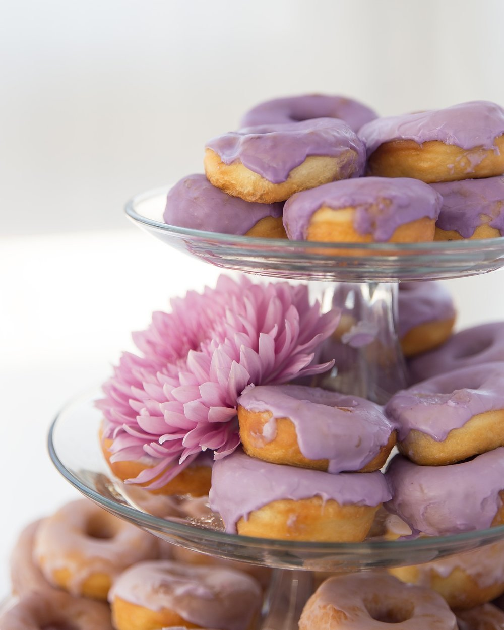 Close up product food photography shot of donuts (doughnuts) with purple icing and a pink flower.