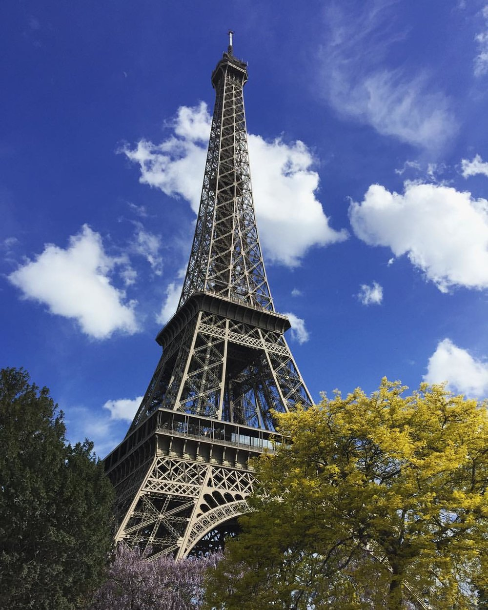 Eiffel tower in springtime with blooming trees and flowers in foreground and blue sky with white clouds behind.