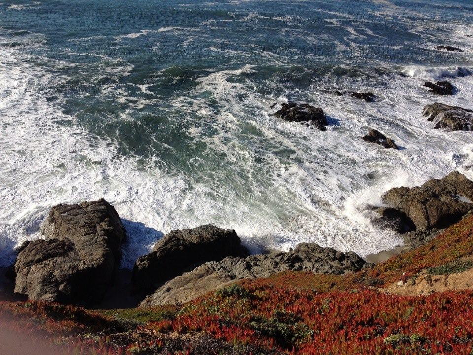 SoCo Beach Cliff.jpg