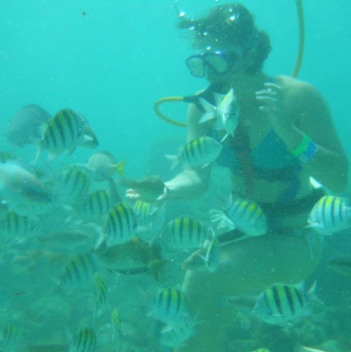 SCUBA diving in the Dominican Republic.