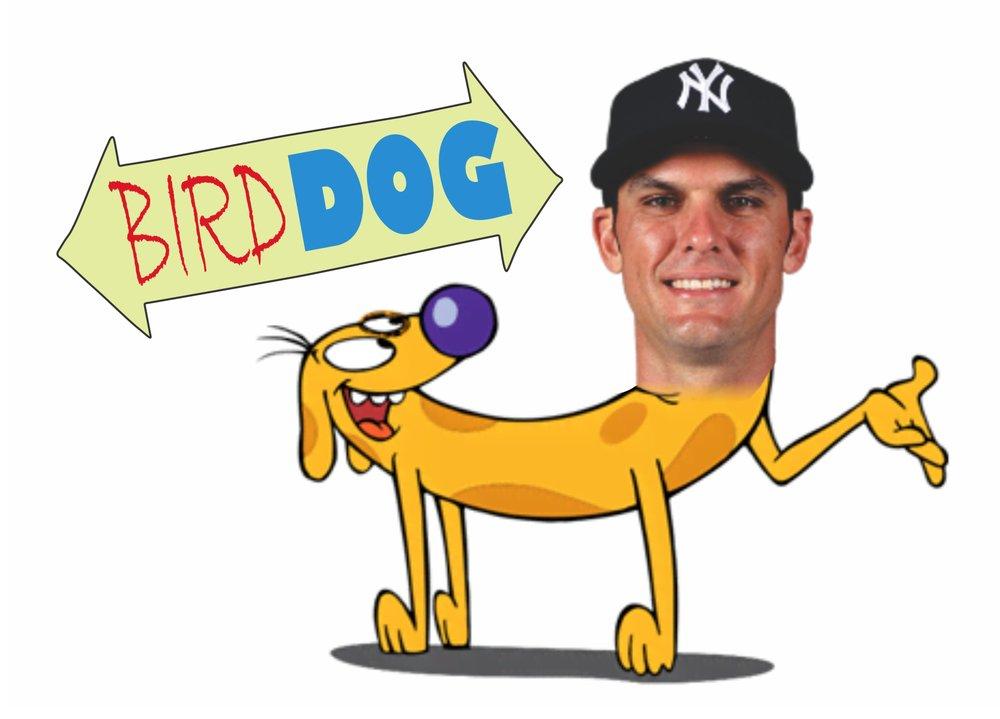 bird dog.jpg
