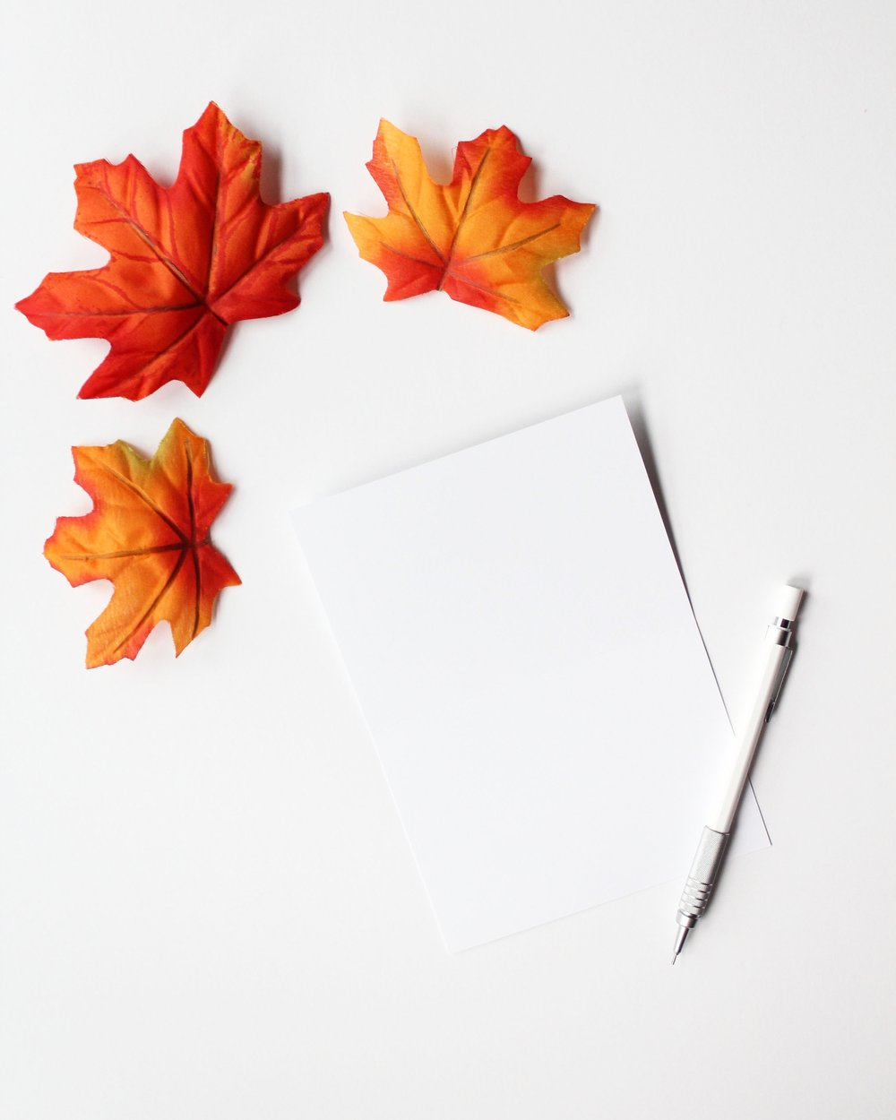 blank card w/ leaves and pencil