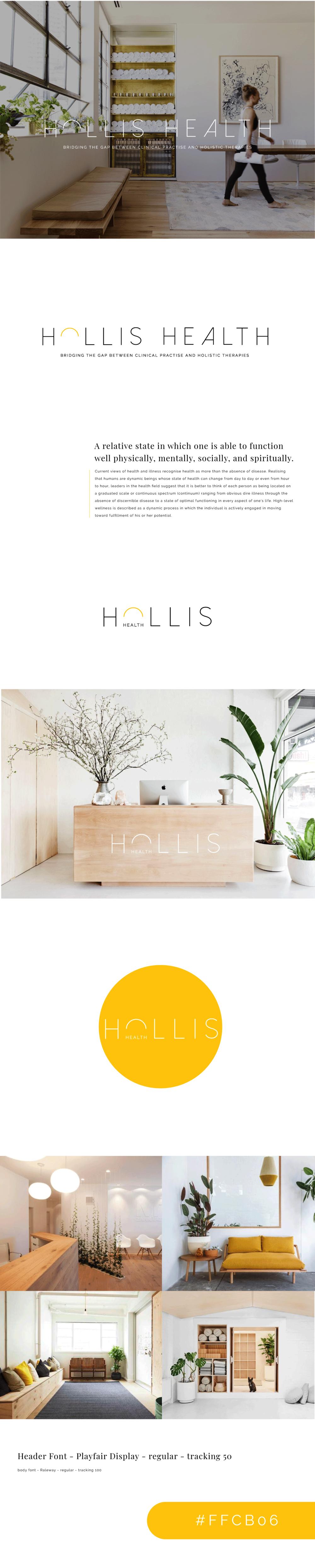 HOLLIS HEALTH BRAND GUIDELINE - IMO CREATIVE.png