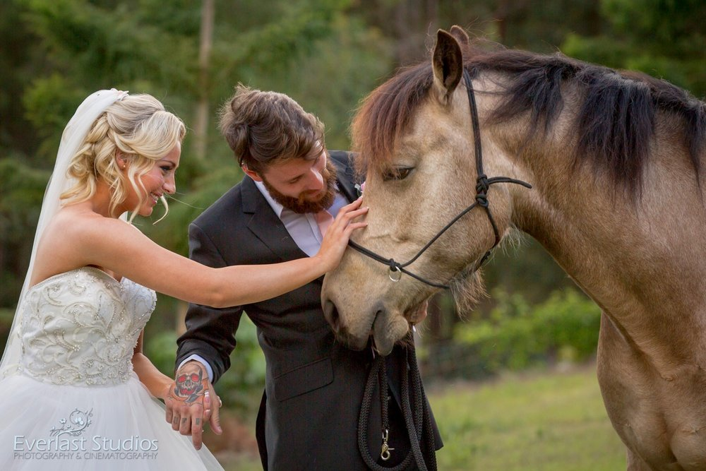 Bride and Groom with their horse