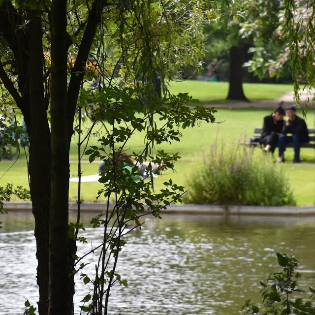 amour parks.jpg