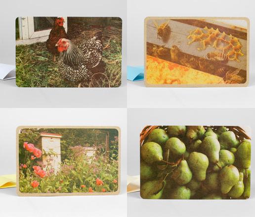 garden series.jpg