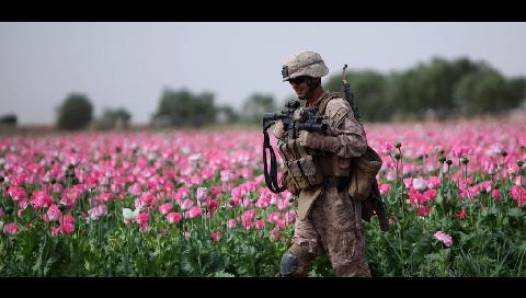 Heroin in Afganistan
