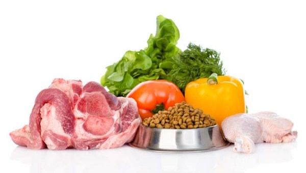 fresh food and kibble.jpg