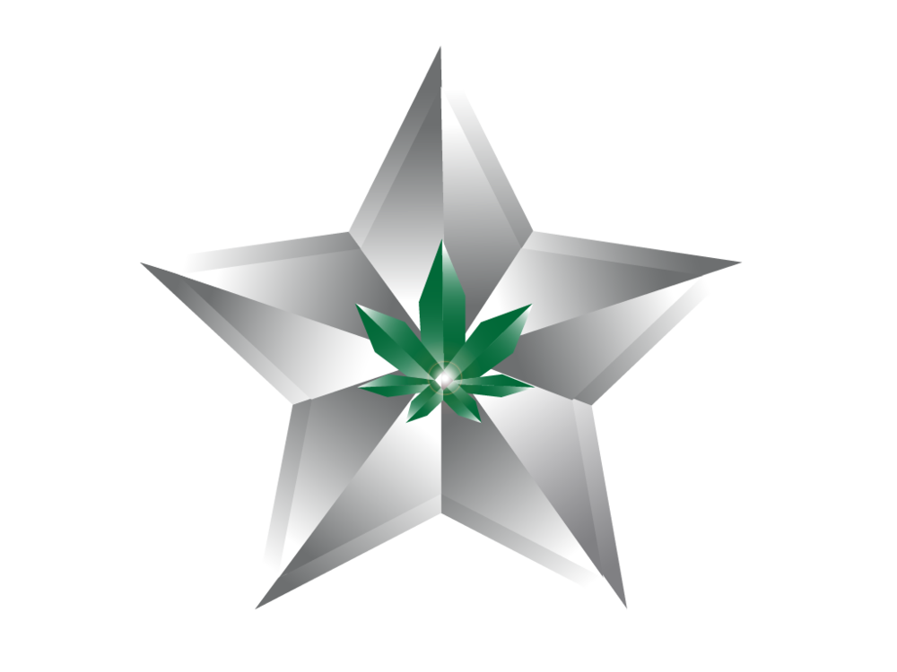 Cannabis Security Services - Unlike other low-cost security providers, Silver Star Protection Group - California is fully insured for cannabis operations. Without this insurance, your security provider can cause your insurance claims to be denied and make you liable for any lawsuits caused by their actions.We don't just protect your business, we empower it to succeed.