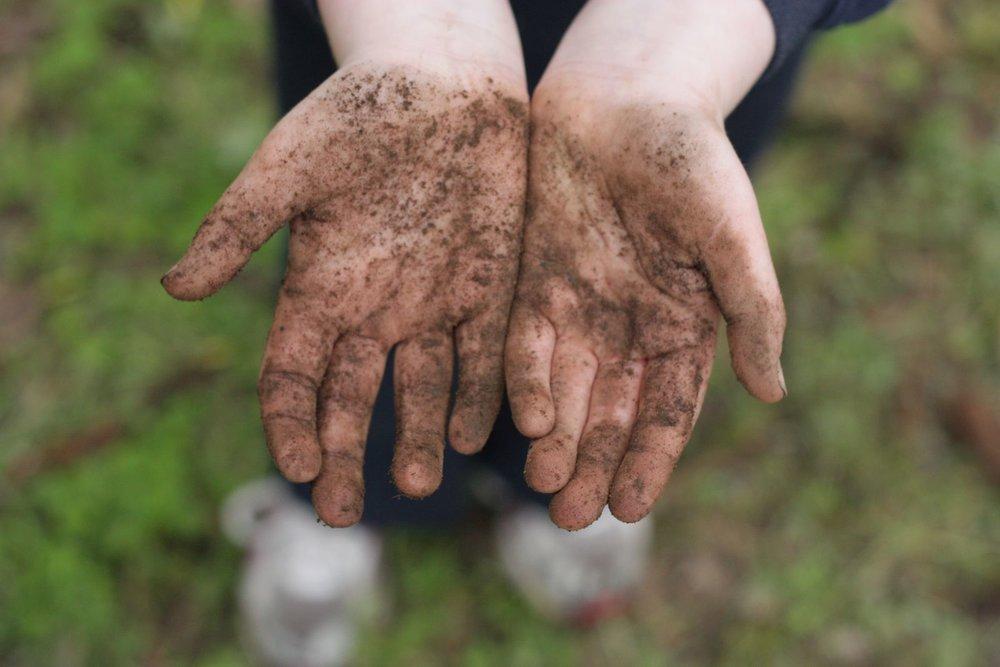 dirty hands! nature play.jpg