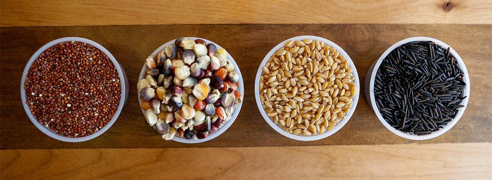 native_ingredients for Heid piece.jpg