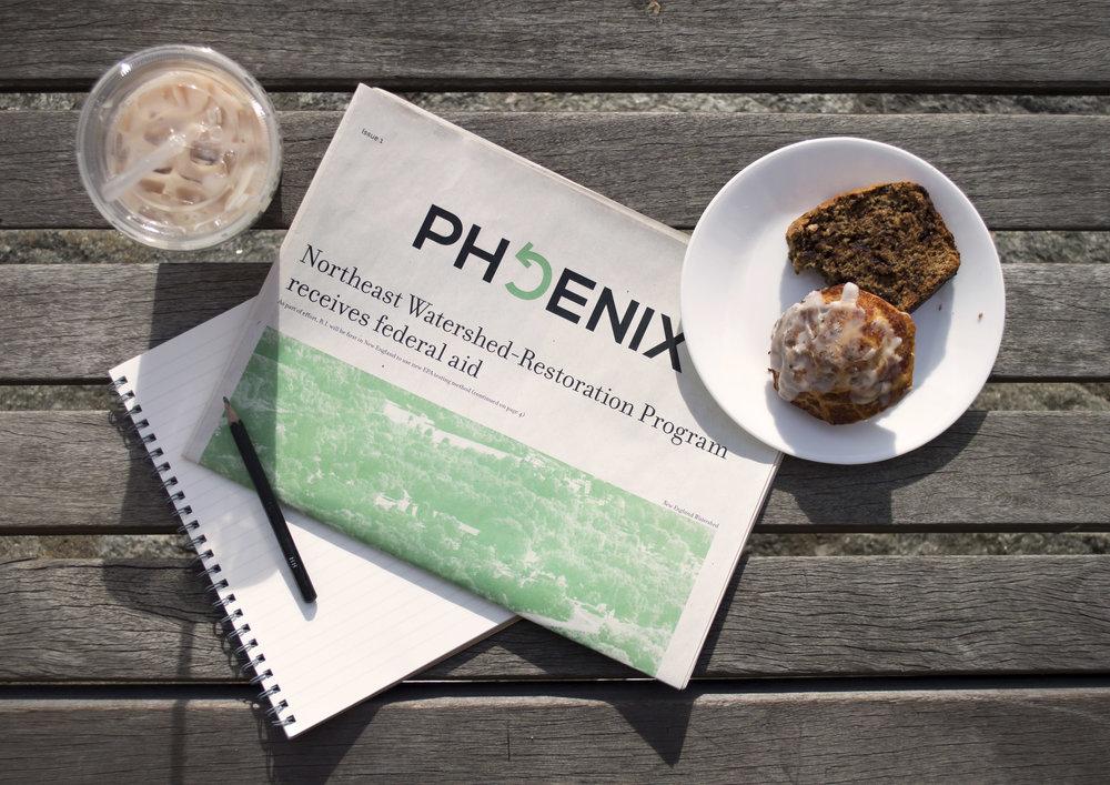 phoenix1.jpg