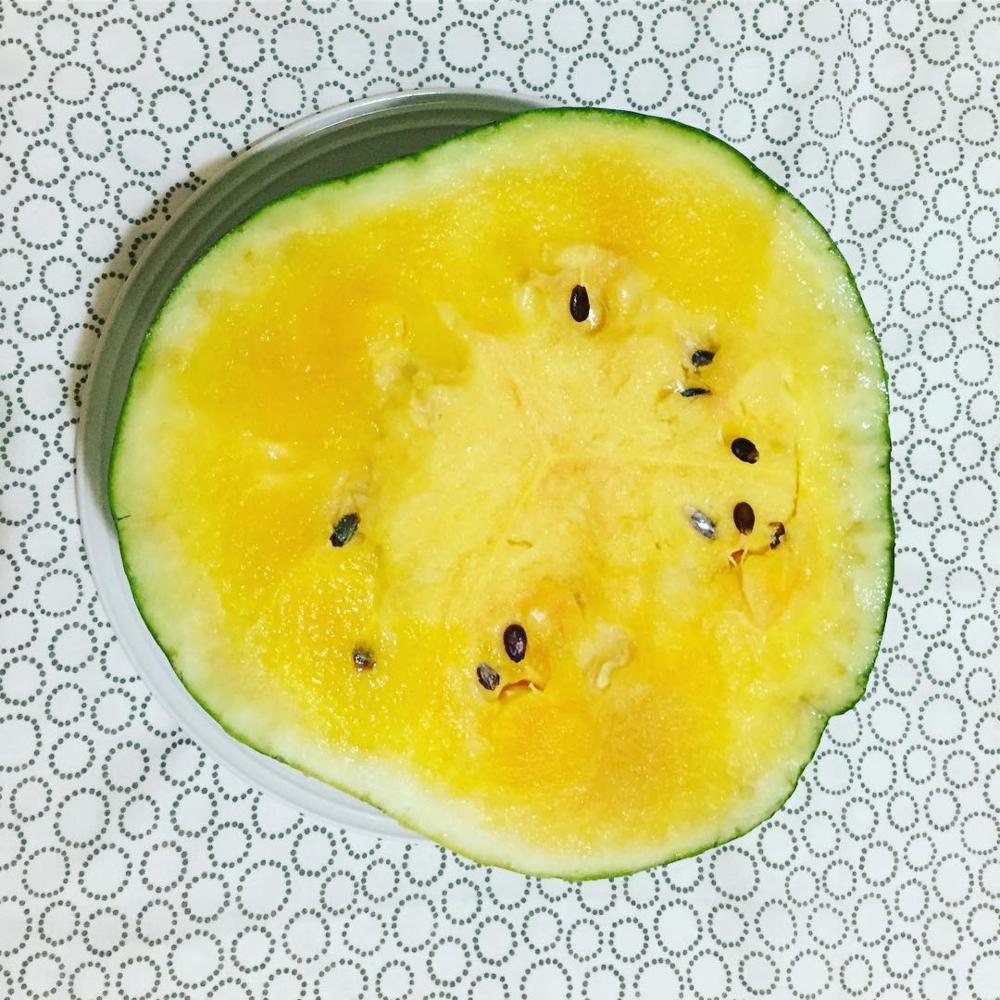kuala-lumpur-yoga-detox-retreat-yellow-watermelon.png