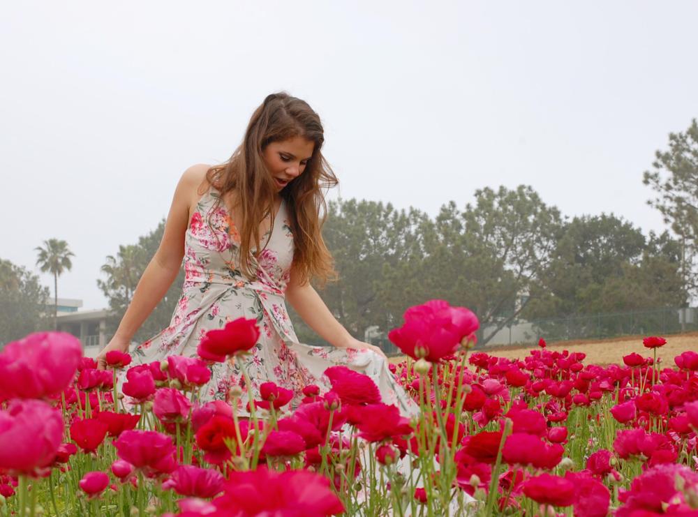 1.Carlsbad Flower Fields -