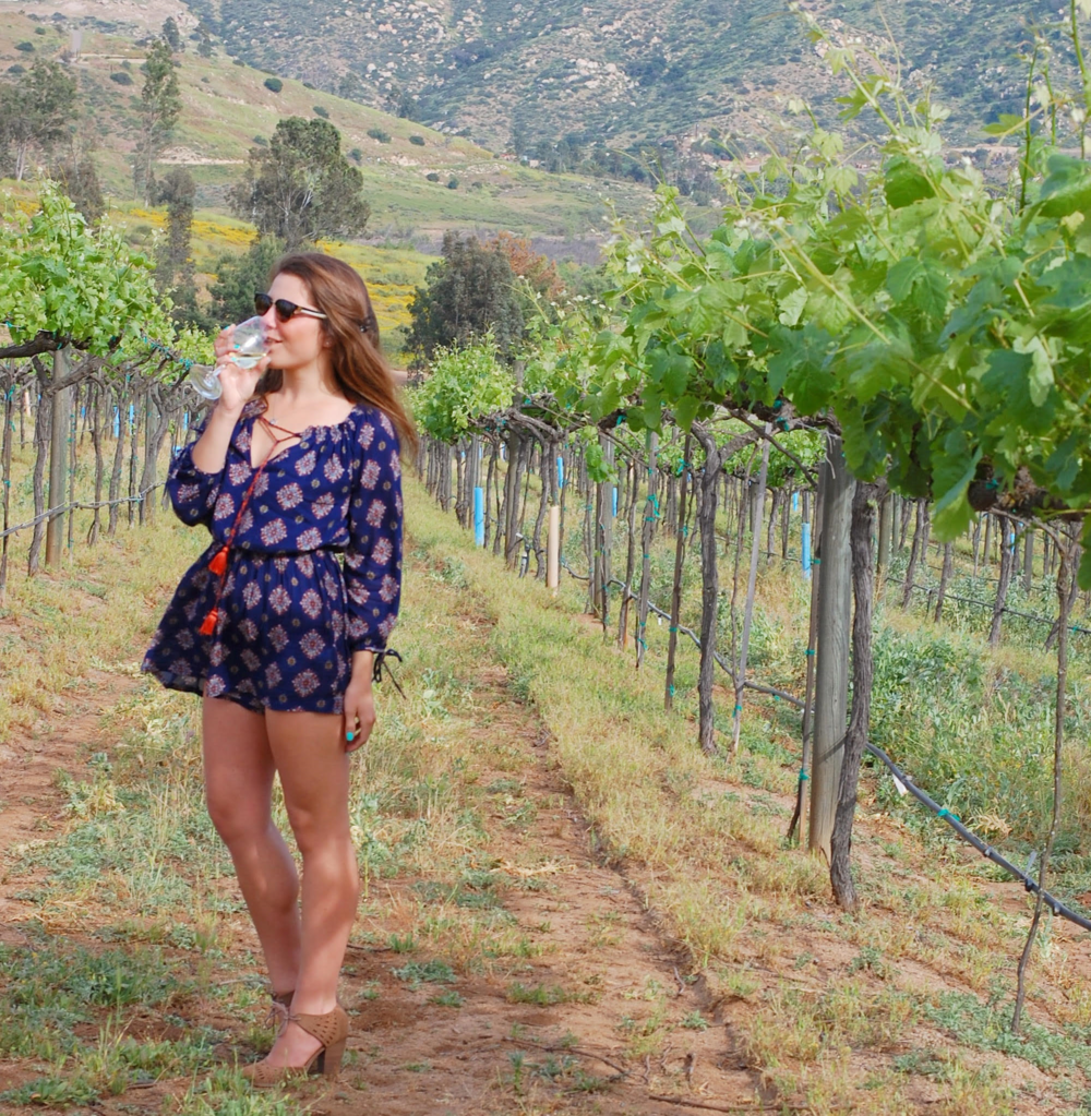 orfila winery.png
