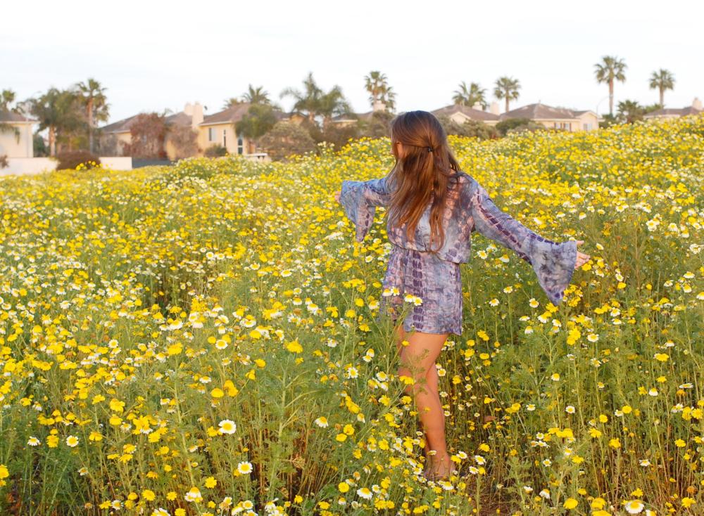 7.Random Fields of Flowers -