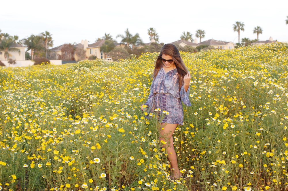 wild flowers pch.png