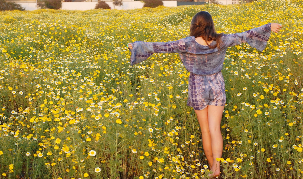 wild flowers pch2.png