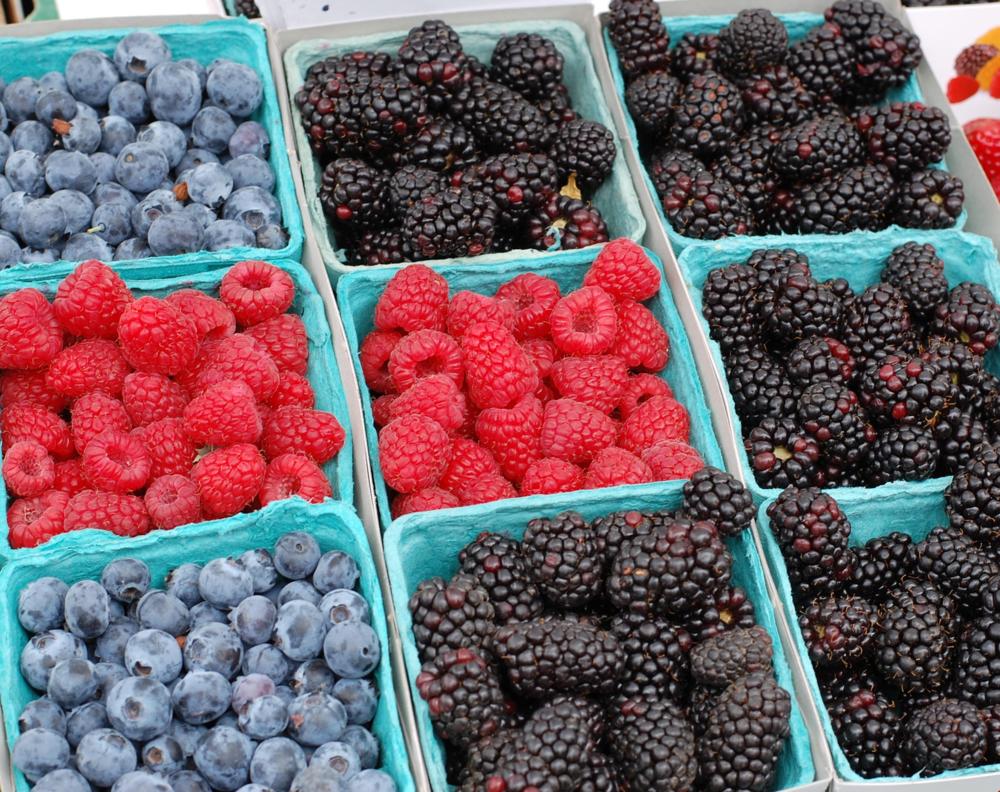 1 berries.png