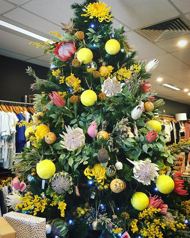 🎄tree inspo!🎄 The most stunning tree at @sissymteliza has truly inspired us for a very Aussie Christmas this year! #seeyouunderthestringybarks on the 15th for our final market of the season at @emuplainsmarket ✨ . . . #christmas #christmastree #treedecorating #aussiechristmas #christmasmarket #christmas #giftsforher #giftsforfriends #market #makersmarket #marketlife #treatyourself #myKíT #KíTaccessories #keepittogether #lifestyleaccessories #mornington #morningtonpeninsula #onlinestore #neoprene #sportsluxe #veganaccessories #emuplainsmarket #supportsmallbusiness #supportlocal