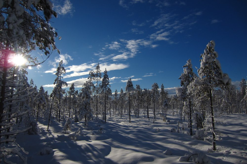 guided winter hiking Finland skiing trip