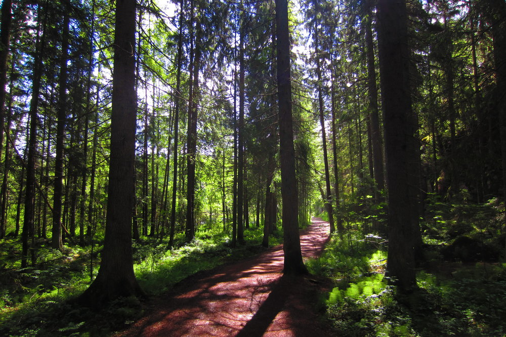 Nuuksio National Park  is located only 35km from Helsinki city center.