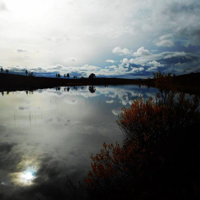 #sunreflection #skyreflection #calmlake #beautyofsuomi #lomitravels #lominaturetravels  #visitfinland #visithelsinki  #minibustrip #guidedtrip #guidedtrips #outdoors  #explorefinland #finland #finlandnature #naturetrip