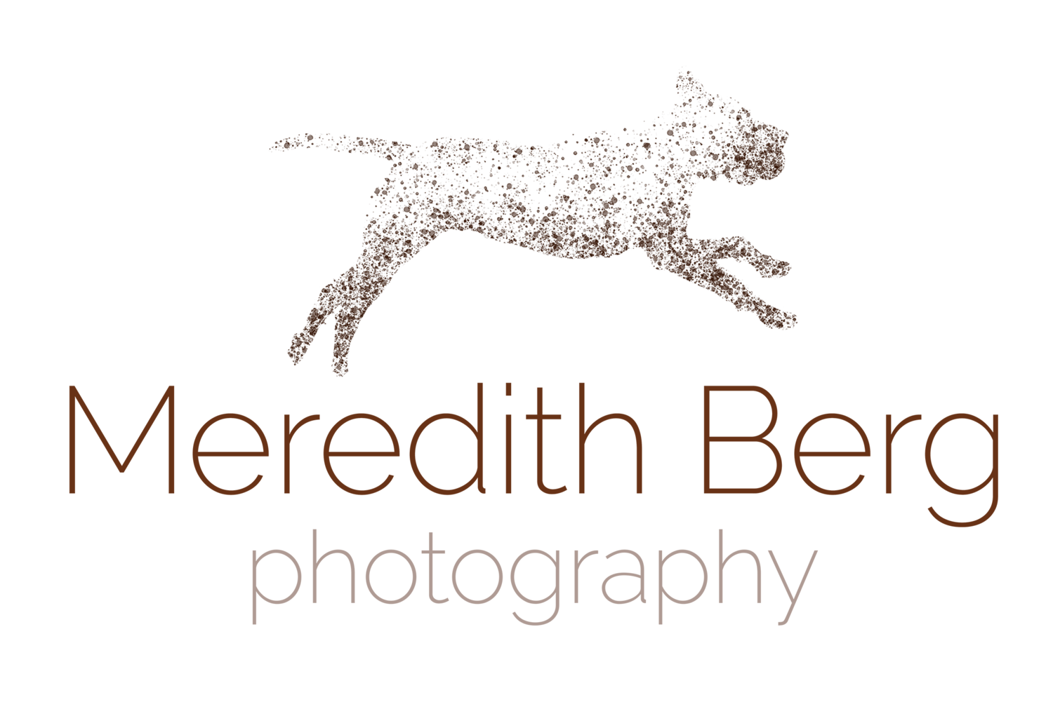 Meredith Berg Photography | Anchorage Alaska pet photographer | Photography for adventurous Alaskans and their dogs.