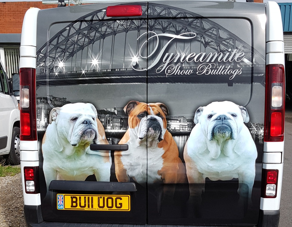 TYNEAMITE BULLDOGS   This job entailed a panel job on both sides and both back doors also being wrapped.