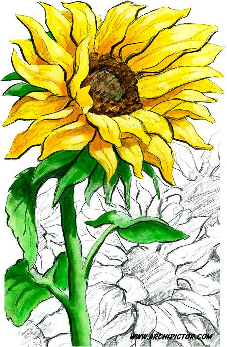 Auringonkukkia 1, Itella Posti 2012