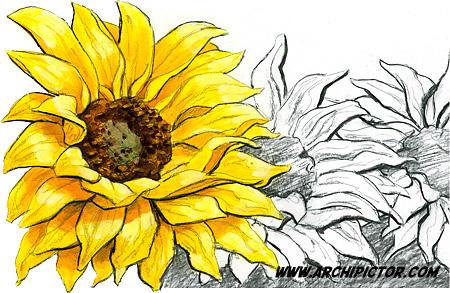 Auringonkukkia 2, Itella Posti 2012