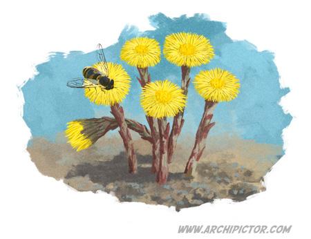 Vaasan Koulunäkki, kevätkampanja, kuvittaja / illustrator Ossi Hiekkala 2014