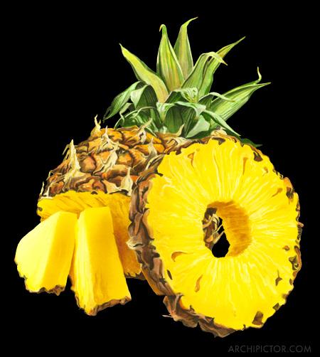 Last Pineapple, kuvittaja / illustrator Ossi Hiekkala 2016