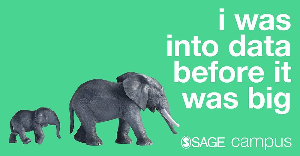 SAGE Campus Elephant Banner