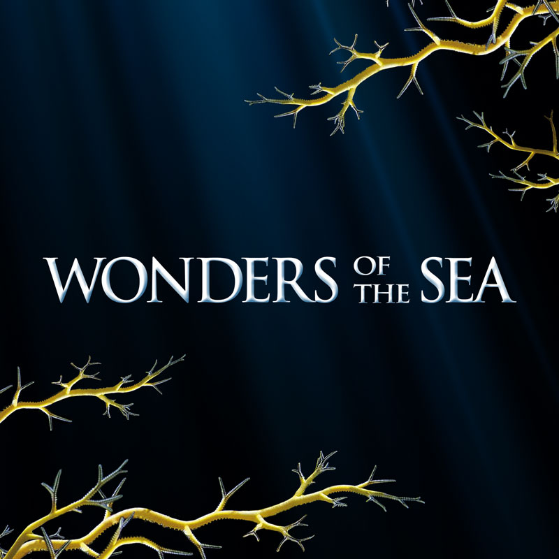 Jean-Michel Cousteau , Jean-Jacques Mantello , David Chocron , Francois Mantello , Arnold Schwarzenegger , Celine Cousteau , Fabien Cousteau