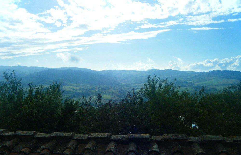 Fontodi. Chianti Classico, Italy
