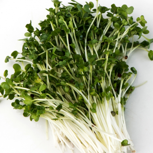 broc sprouts.jpg