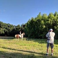 Scenic Venues - Props/Livestock available
